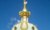 РПЦ приспособит 6 тысяч метров парка на Канонерском под строительство храма