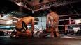 В Выборге пройдет международный турнир по боксу