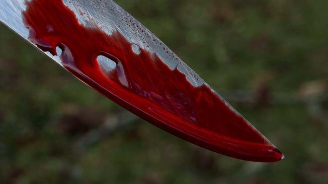 В Петергофе женщина устроила поножовщину во время застолья