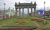 Восемь миллионов цветов высадили в Петербурге в преддверии ЧМ-2018