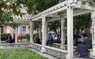 Сад Дружбы на Литейном проспекте пообещали благоустроить