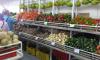 Эксперт: В Венесуэле нет проблем с продуктами