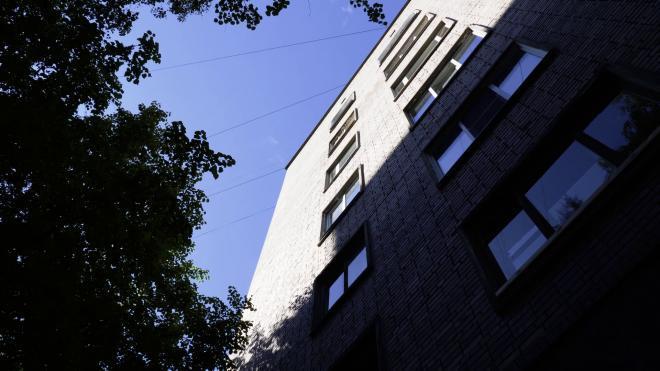 Петербуржца, который выбросил девушку с балкона пятого этажа, арестовали на два месяца