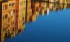Строительную компанию собираются оштрафовать за загрязнение Обводного канала