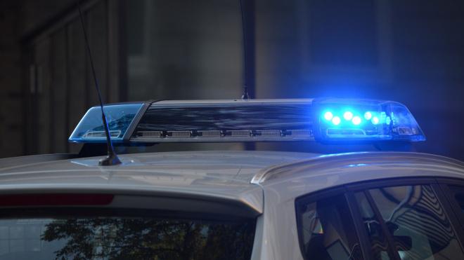 Полиция задержала петербурженку, разъезжавшую без прав на каршеринге