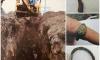 В Ленобласти при прокладке газопровода нашли захоронение XIV века