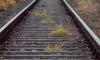 Пенсионерка оказалась под колесами поезда в районе железнодорожной станции Тосно – Нурма