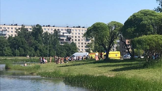 Ребенка спасли после заплыва в пруду Полюстровского парка