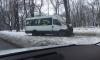 """Маршрутка """"обняла"""" дерево в Красном Селе: пострадал водитель"""