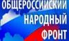 """В Народный фронт вступили могильщики, умственно отсталые и """"содомиты"""""""