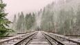"""Поезда """"Аллегро""""на сутки прекратяткурсировать между ..."""