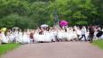 Невесты в Петербурге устроили пробежку в свадебных ...