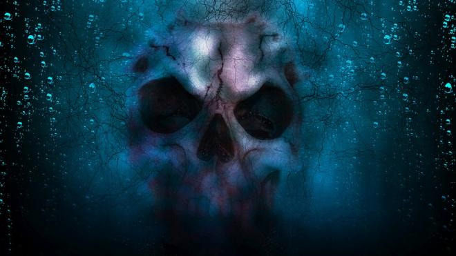 В затопленном подвале морга Пикалево обнаружили скелет