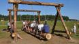 Проверка детских лагерей Ленобласти выявила почти ...