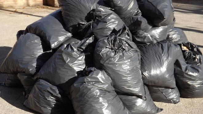 В Выборгском районе закрыли 151 несанкционированную свалку