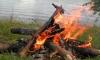 В петербургском парке «Екатерингоф» обнаружен сгоревший на костре труп