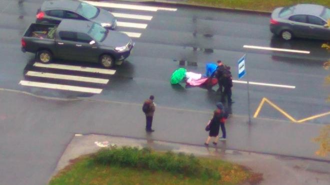 На Чернышевском проспекте сбили пешехода