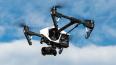 Во Флориде отец решил сфотографировать детей с дрона, ...
