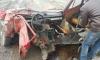 """Жигули"" жестко разорвало на две части из-за нарушителя на Volkswagen (фото)"