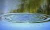 Нырнул и не вынырнул: в Оккервиле утонул мужчина