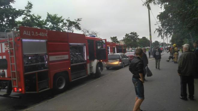 В Петербурге сильный пожар в квартире по Дунайскому проспекту