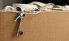 Правительство Ленобласти выделит 45 квартир для погорельцев