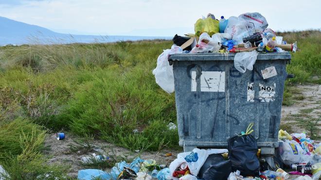 ЗакС предложил не штрафовать за вывоз твердых коммунальных отходов в выходные и праздники