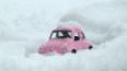 Для петербургской зимы заготовят более 100 тысяч тонн пе...