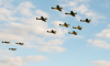 В Петербурге состоится воздушный парад в честь празднования 75-й годовщины со Дня образования 6 Армии ВВС и ПВО