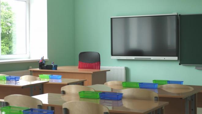 Петербуржцам предложили выбрать формат коронавирусных ограничений для школ