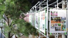 Центр компетенций по формированию комфортной городской среды открыт в Петербурге