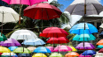 """Девушка с розовым зонтом ограбила мужчину на """"Площади ..."""