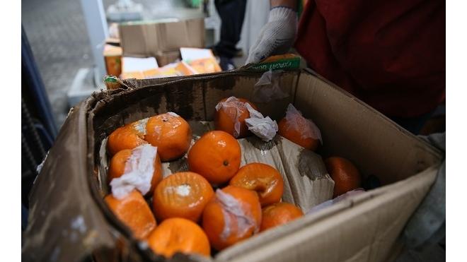Таможня спасла Петербург от 200 тонн вонючих индийских мандаринов