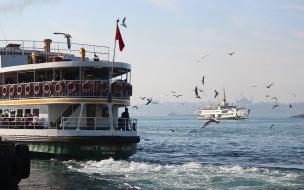 Дни турецкого кино