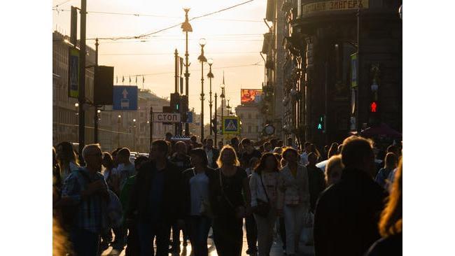 """Петербуржцы попросили губернатора очистить улицы от """"зебр"""" и """"лосей"""""""