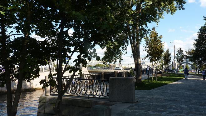 В общественном пространстве на Карповке появится пешеходная зона