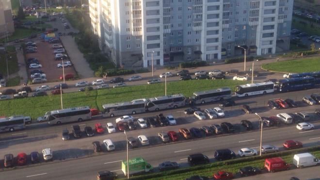 По улице Оптиков создается огромная пробка: автобусам приходится становиться уже в третий ряд