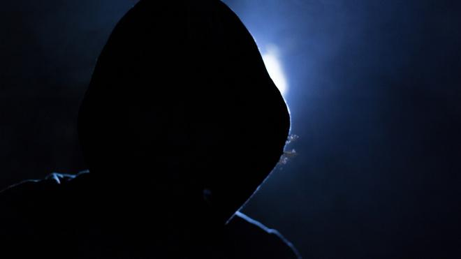 Двое петербуржцев похитили своего знакомого