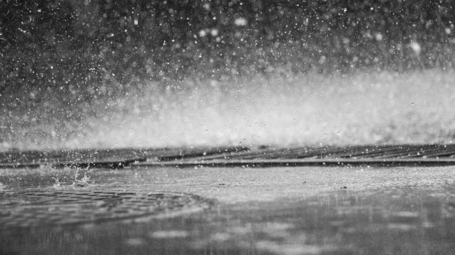 После дождей на набережной Мойки образовалась вторая река