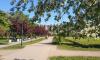 Во Фрунзенском районе зацвел яблоневый сад