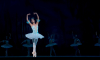 Петербуржцы стали меньше ходить в театры и музеи из-за снижения доходов