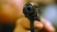 В Петербурге обстрелян журналист, защищающий права ...
