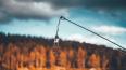 В Ленобласти задержаны браконьеры с электроудочками, ...