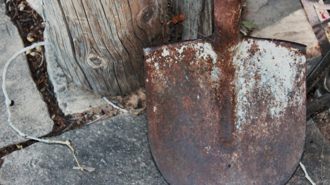 Пенсионер из Пушкина избил своего гостя черенком лопаты