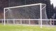 Школьника задавило насмерть футбольными воротами в Примо...