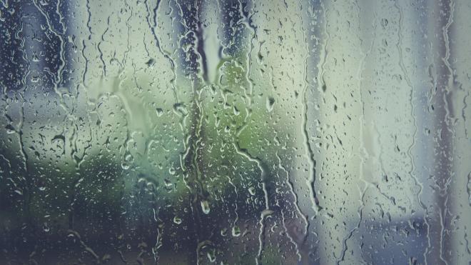 В Петербурге 5 мая будет облачно и дождливо