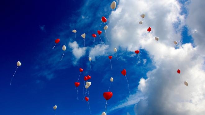 День сердца отметят сегодня на Владимирской площади
