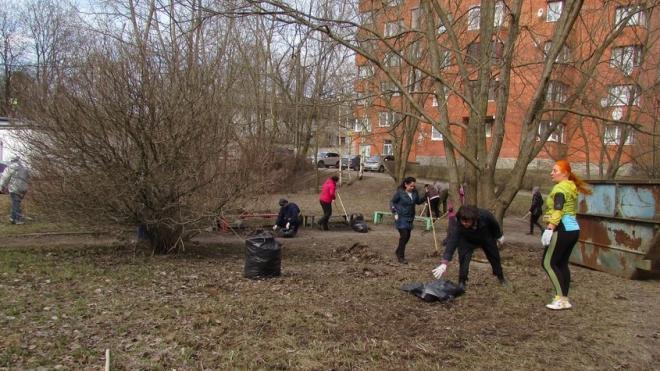 В Выборге три тысячи человек убрали сотни кубов мусора