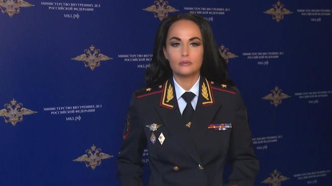 """МВД задержало 11 подозреваемых по делу о хищении ₽10 млрд у """"Россетей"""""""