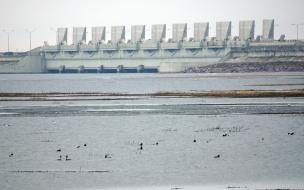 Затворы дамбы в Петербурге частично закрыли из-за угрозы наводнения
